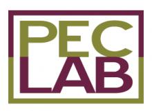 PEC-Lab-logo
